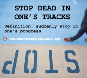 Idiom-STOP DEAD IN ONE'S TRACKS-EdmontonEnglishSchool