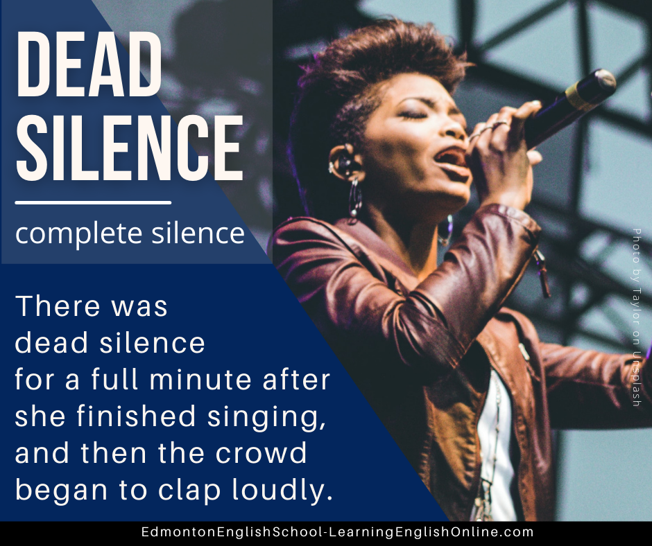DEAD SILENCE Definition: complete silence Example sentence: There was dead silence for a full minute after she finished singing, and then the crowd began to clap loudly.