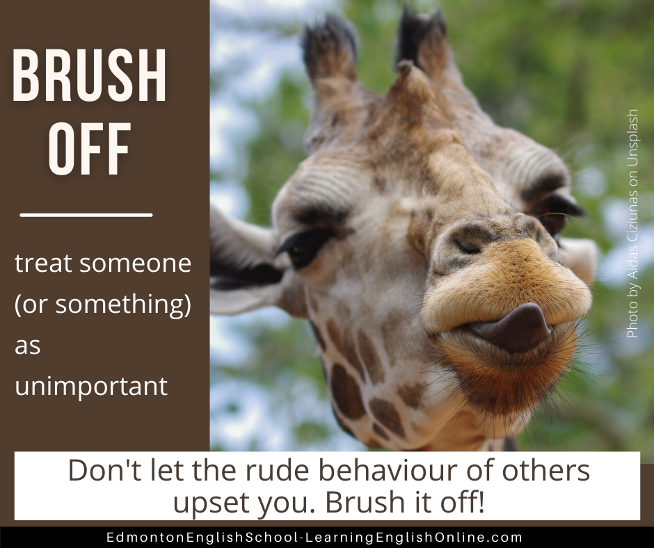 Brush Off DEFINITION: treat someone (or something) as unimportant EXAMPLE: Don't let the rude behaviour of others upset you. Brush it off!